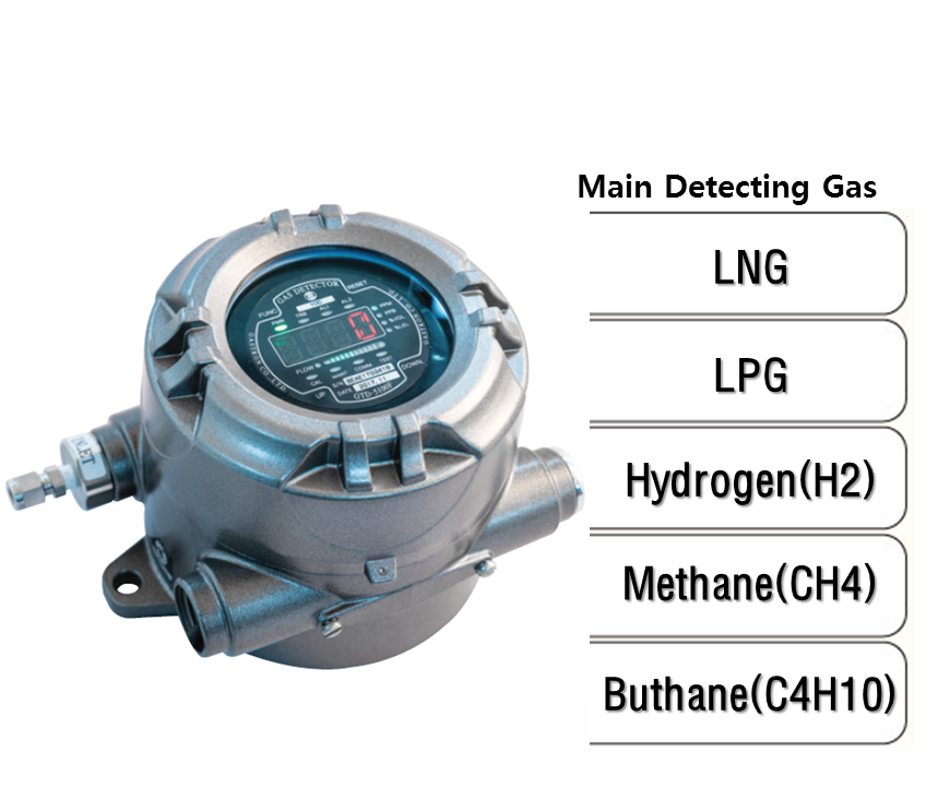 Explosion Proof Type Sampling Flammable Gas Detector, Main Detecting Gas: LNG, LPG, H2, CH4, C4H10